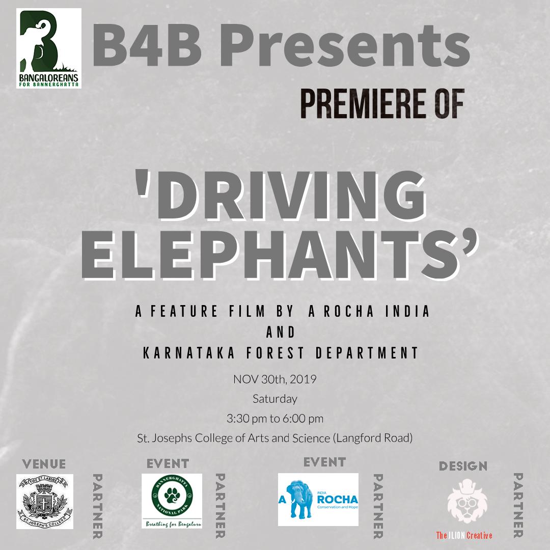 Driving Elephants IG 1